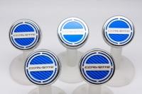 E21877 Cap Set-Engine Fluids-Carbon Fiber-Colors-Corvette Script-Automatic-5 pieces-14-17